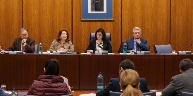 La consejera de Agricultura, Carmen Crespo, en la comisión parlamentaria de ayer.