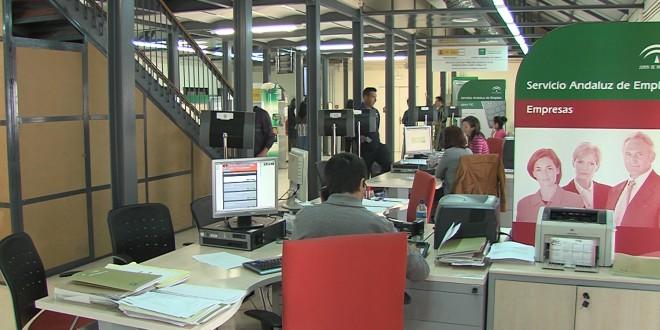 Oficina del SAE en Baena. Foto de archivo TV Baena.