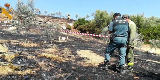 Un agente del SEPRONA en un atestado por incendio forestal.