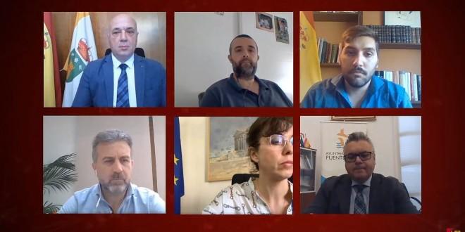Imagen del Pleno Ordinario de la Diputación de Córdoba celebrado esta mañana de forma telemática.