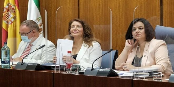 La consejera de Agricultura, Carmen Crespo, en su comparecencia de ayer. Foto: Junta de Andalucía.