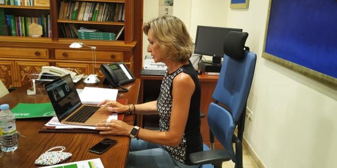 La delegada territorial de Educación, Inmaculada Troncoso, en una de las videoconferencias con  directores de colegios. foto: Junta de Andalucía.