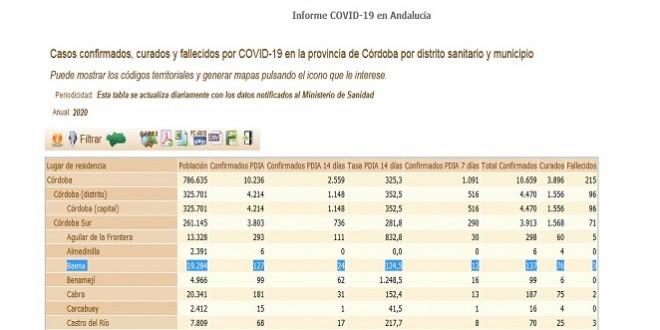 Ayuntamiento Coronavirus parte 19 Octubre 2020 (1)