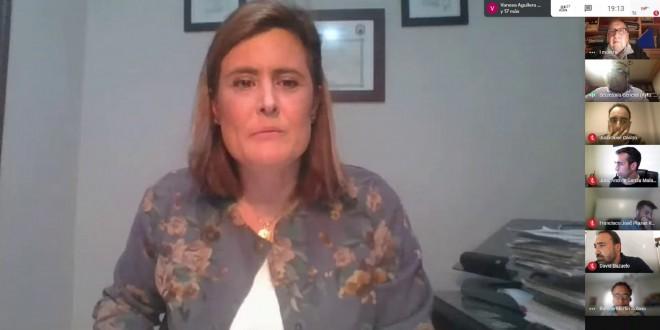 La alcaldesa, Cristina Piernagorda, en primer plano en una captura de pantalla del Pleno Ordinario celebrado ayer de forma telemática.